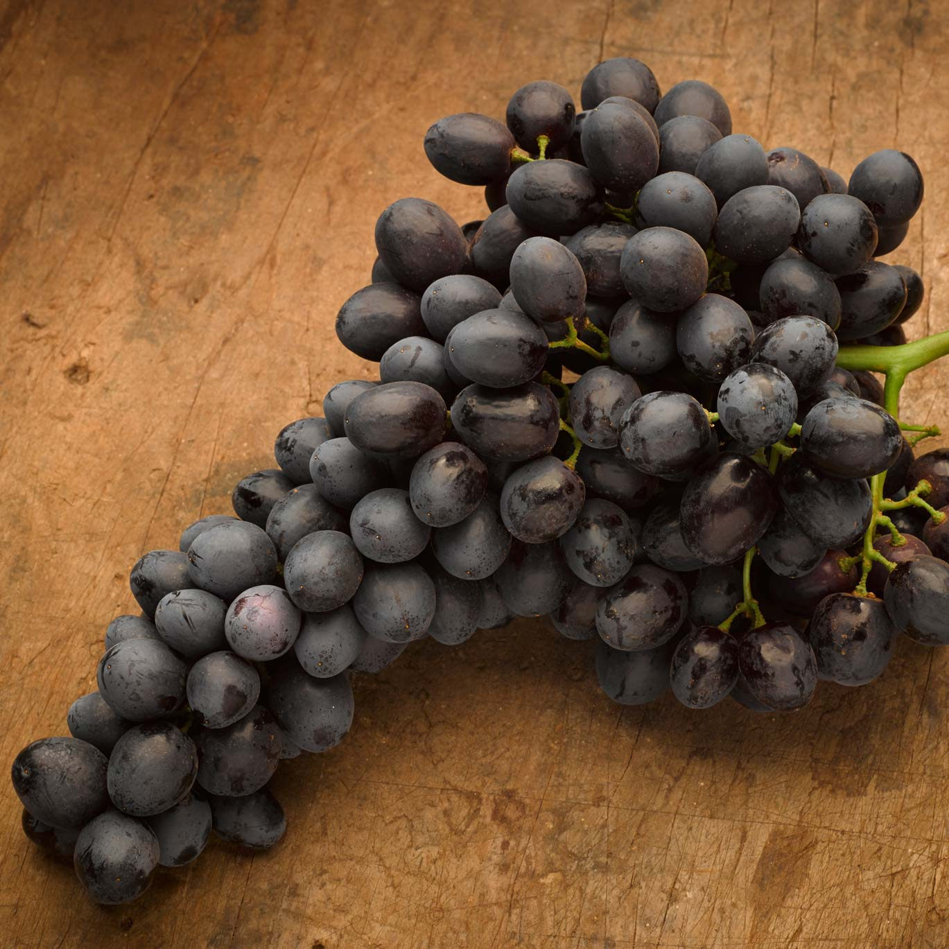 Grape varieties australian grown fruit master - Seedless grape cultivars ...